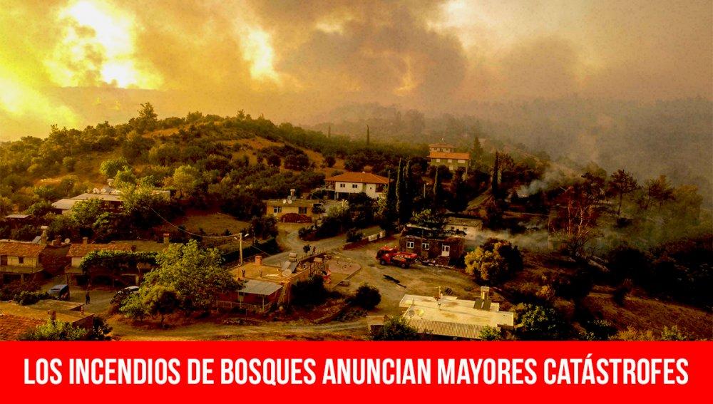 Los incendios de bosques anuncian mayores catástrofes