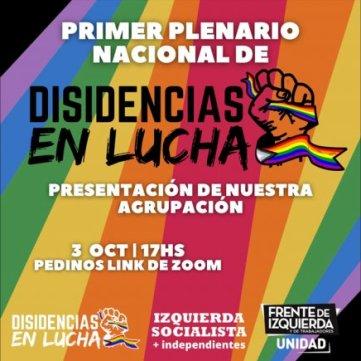 Primer plenario nacional de Disidencias en Lucha